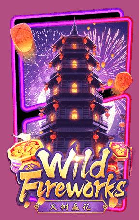 ปก Wild Fireworks