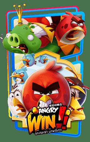 ปก angry-win