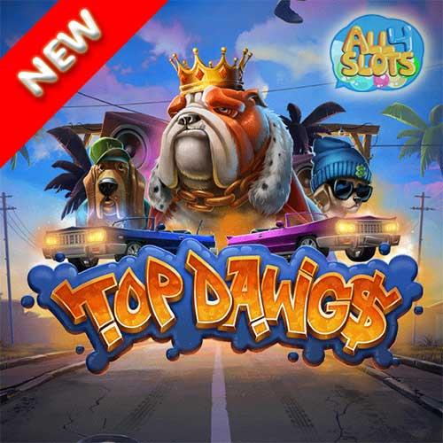 top-dowg$
